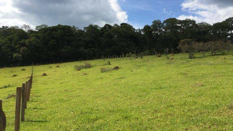 Sitio de 4 alqueires em Bragança Paulista- SP bairro do Menin