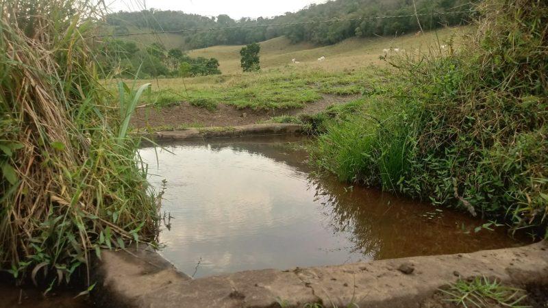 Fazenda à venda  com 29 alqueires em Camanducaia MG